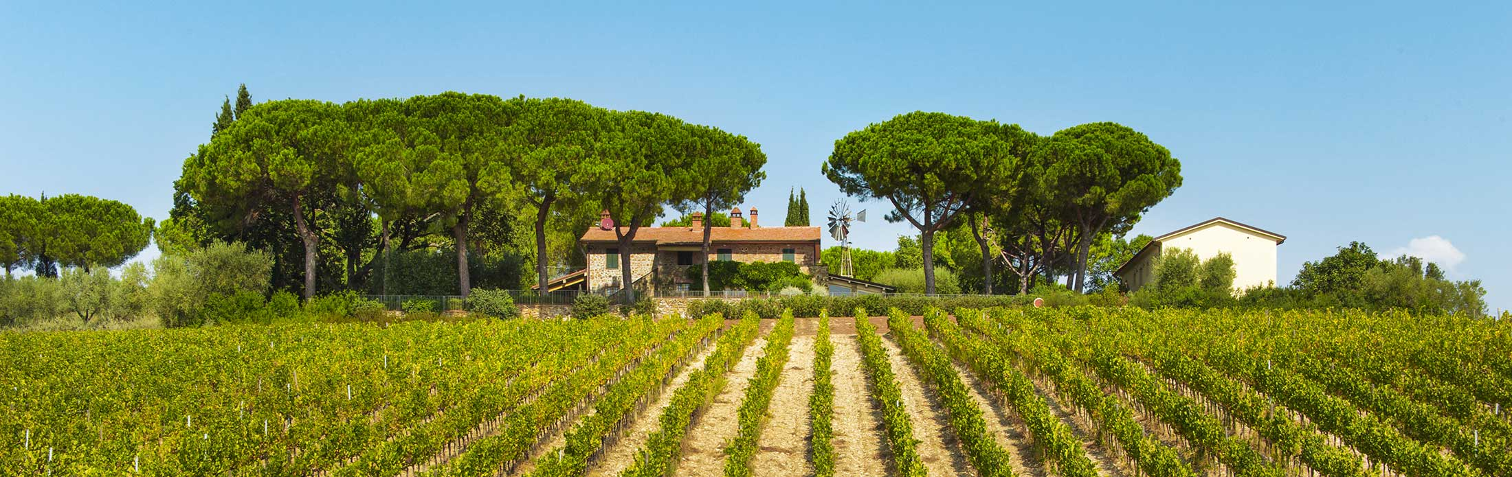 Agriturismo-nel-cuore-della-Toscana